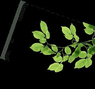 Khu đô thị sinh thái An Lạc Green Symphony Vân Canh -